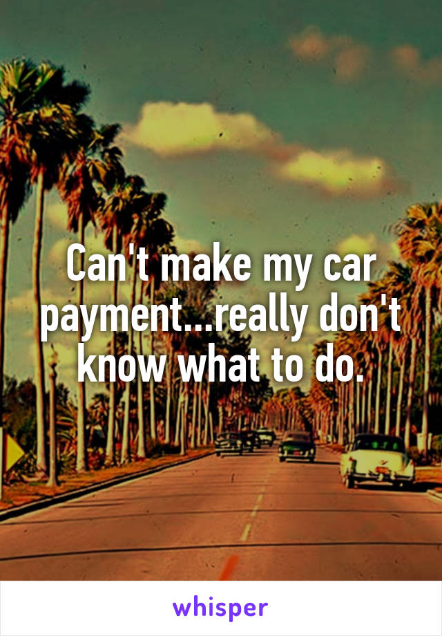 Can't make my car payment...really don't know what to do.