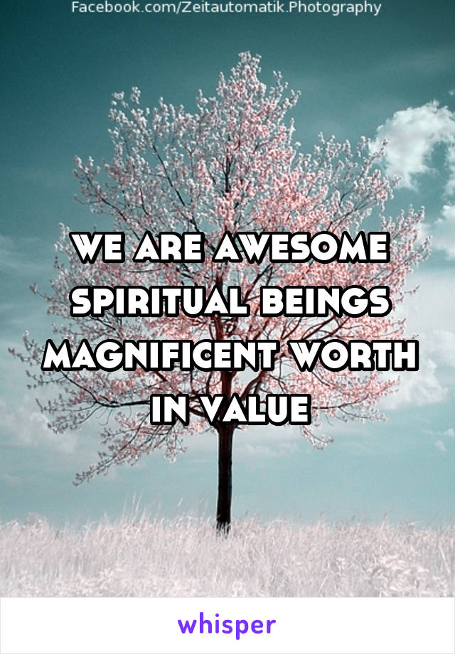 we are awesome spiritual beings magnificent worth in value