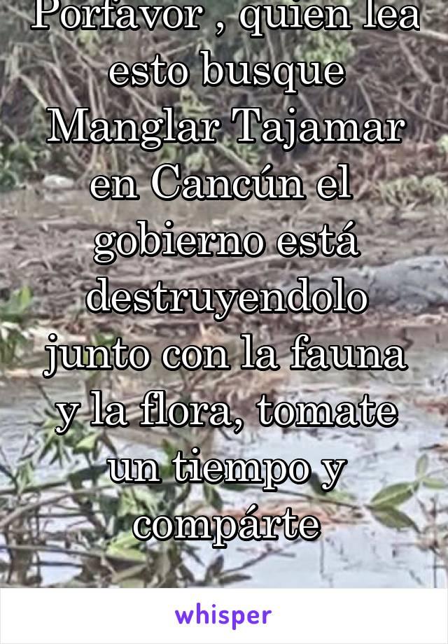 Porfavor , quien lea esto busque Manglar Tajamar en Cancún el  gobierno está destruyendolo junto con la fauna y la flora, tomate un tiempo y compárte