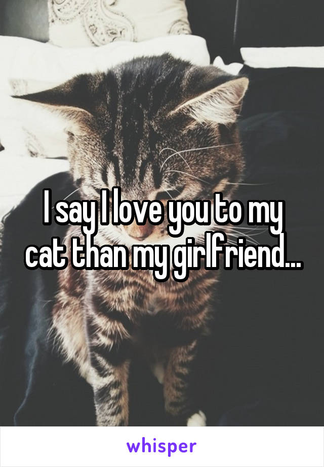 I say I love you to my cat than my girlfriend...