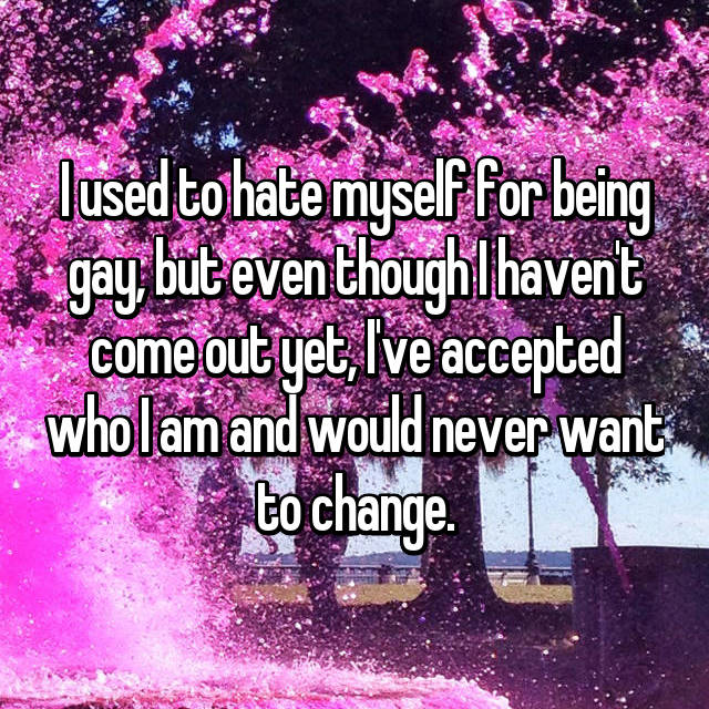 I used to hate myself for being gay, but even though I haven't come out yet, I've accepted who I am and would never want to change.
