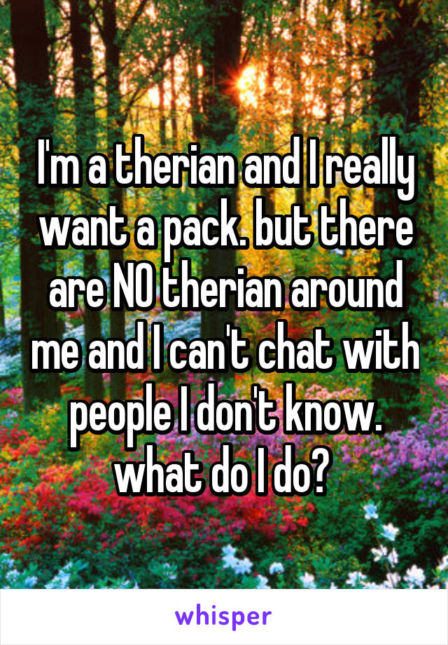 I'm a therian and I really want a pack. but there are NO therian around me and I can't chat with people I don't know. what do I do?