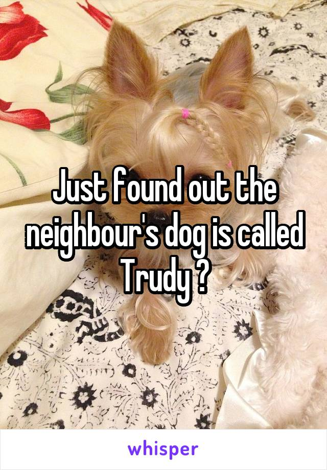 Just found out the neighbour's dog is called Trudy 😂