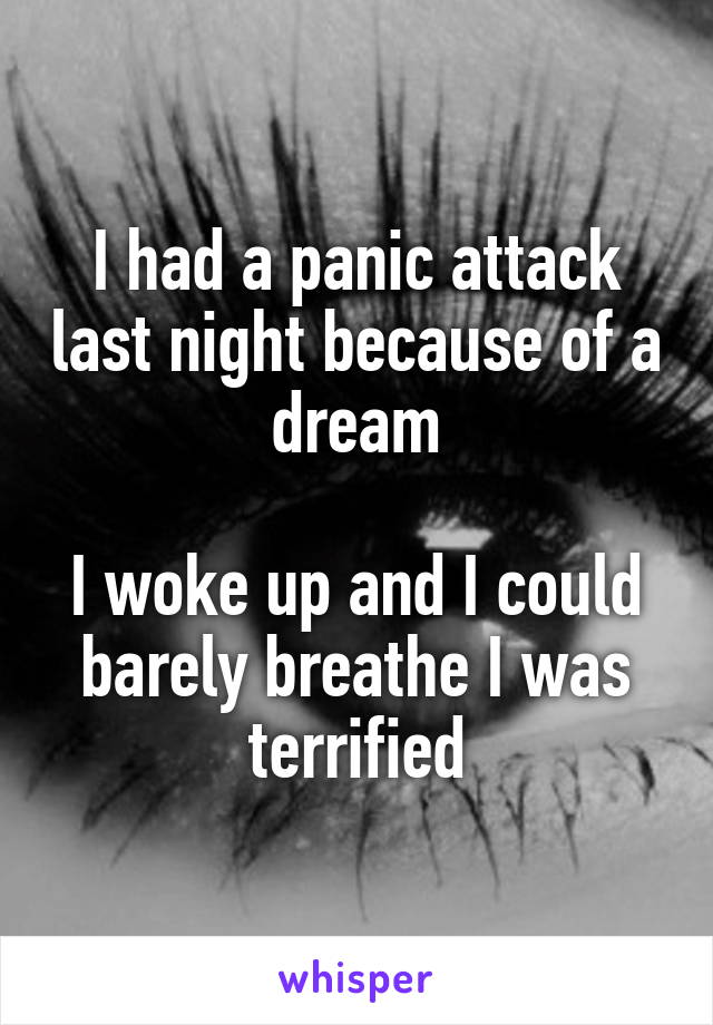 I had a panic attack last night because of a dream  I woke up and I could barely breathe I was terrified