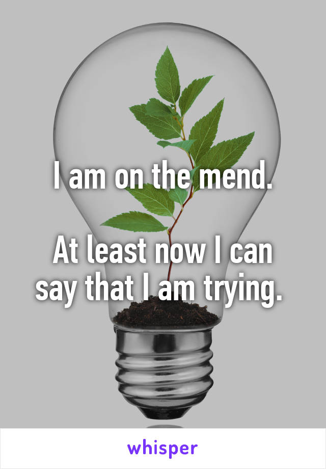 I am on the mend.  At least now I can say that I am trying.