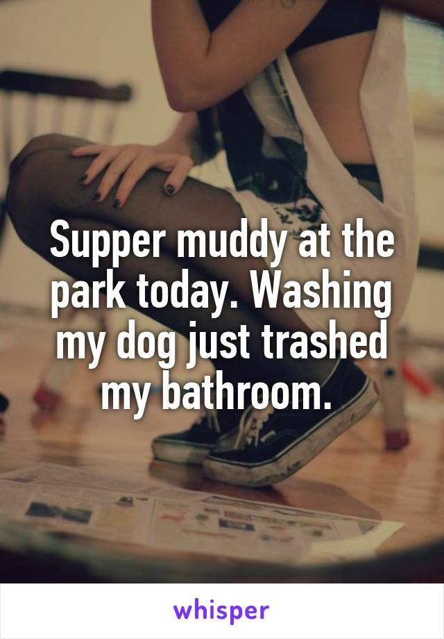 Supper muddy at the park today. Washing my dog just trashed my bathroom.