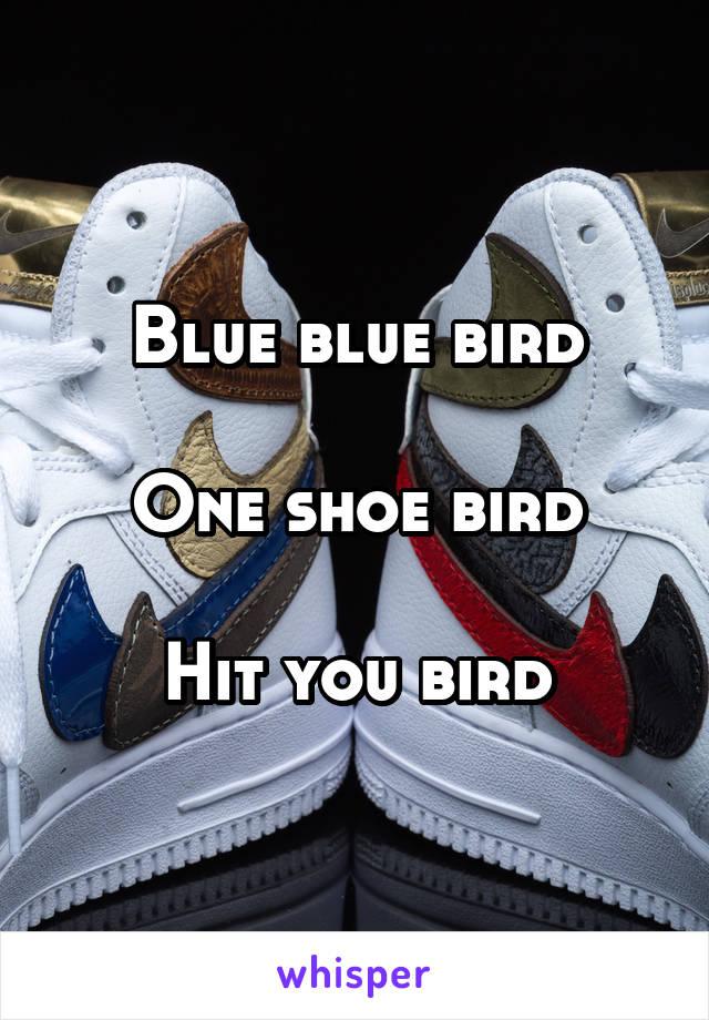 Blue blue bird  One shoe bird  Hit you bird