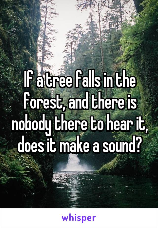 If a tree falls in the forest, and there is nobody there to hear it, does it make a sound?