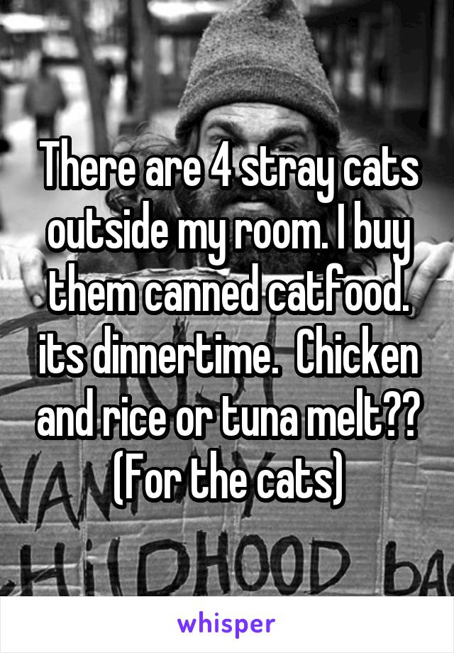 There are 4 stray cats outside my room. I buy them canned catfood. its dinnertime.  Chicken and rice or tuna melt?? (For the cats)