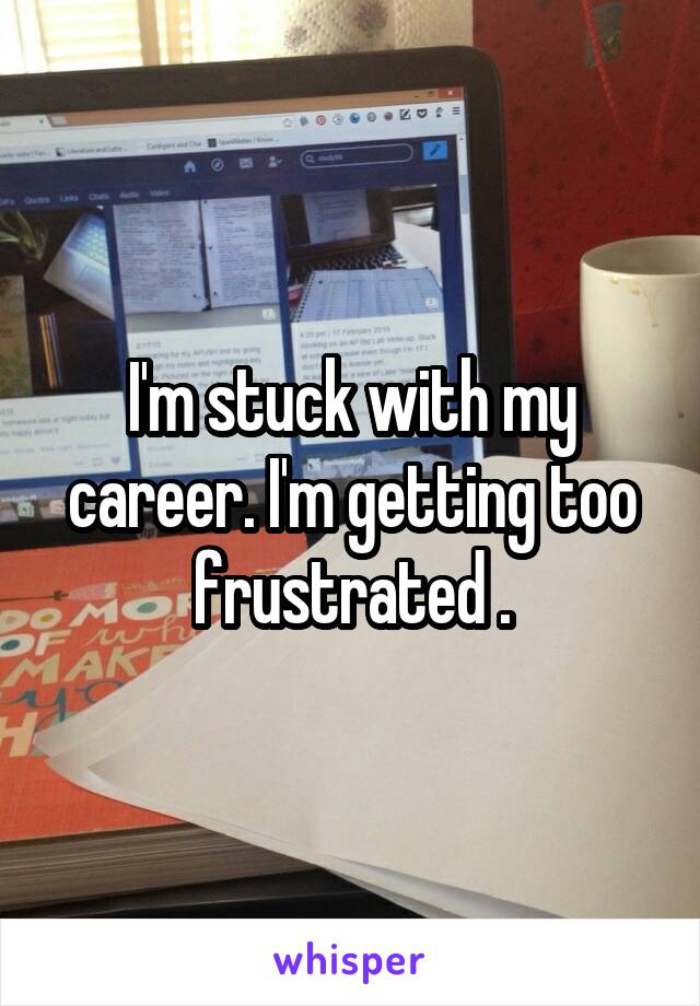 I'm stuck with my career. I'm getting too frustrated .
