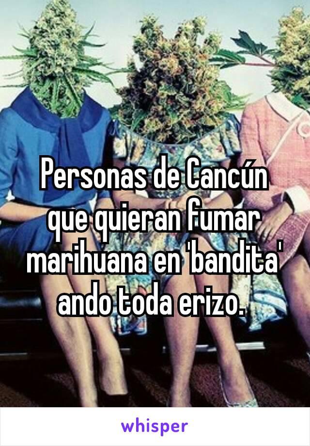 Personas de Cancún que quieran fumar marihuana en 'bandita' ando toda erizo.