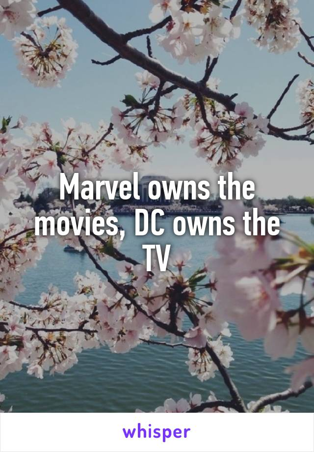 Marvel owns the movies, DC owns the TV