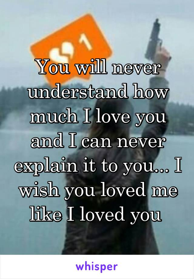 You will never understand how much I love you and I can never explain it to you... I wish you loved me like I loved you