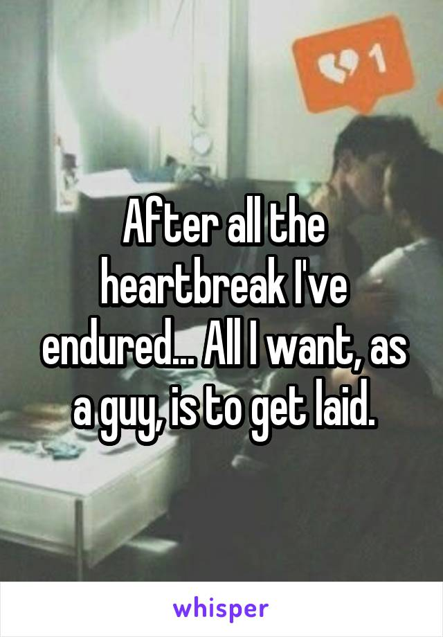 After all the heartbreak I've endured... All I want, as a guy, is to get laid.