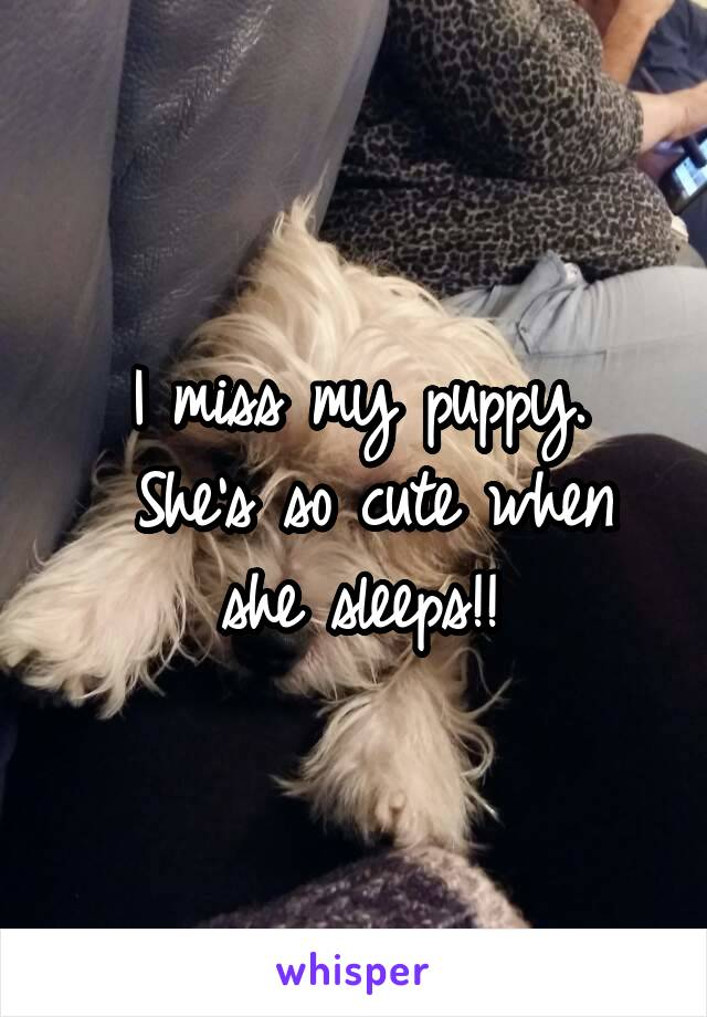 I miss my puppy.  She's so cute when she sleeps!!