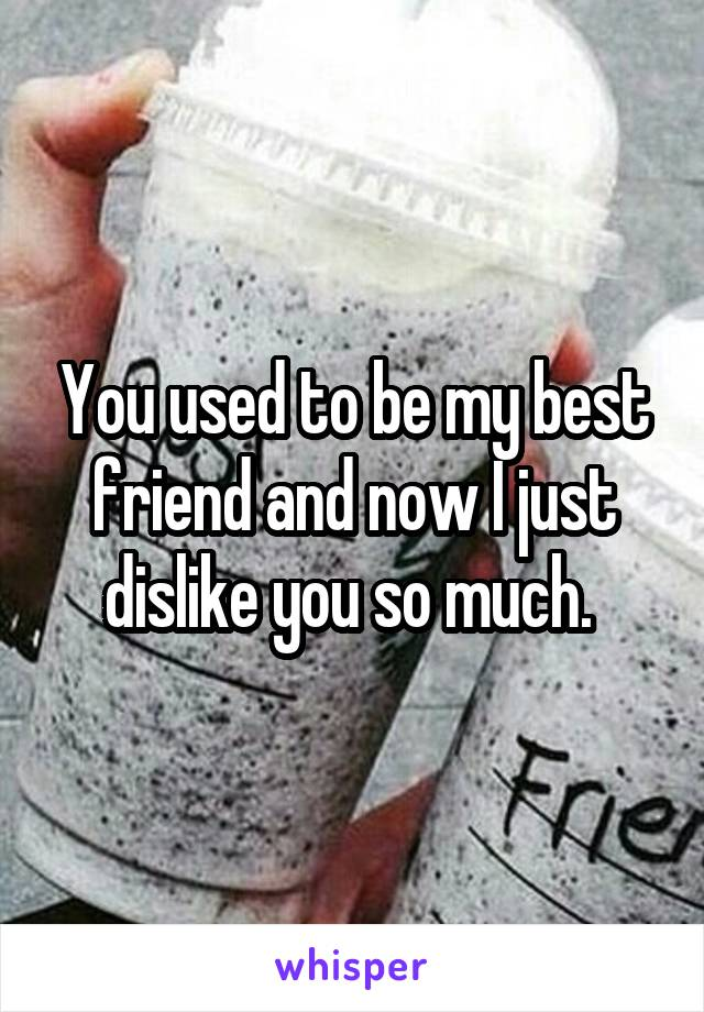 You used to be my best friend and now I just dislike you so much.