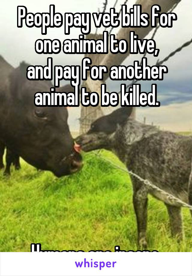 People pay vet bills for one animal to live, and pay for another animal to be killed.      Humans are insane.