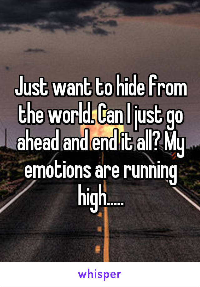 Just want to hide from the world. Can I just go ahead and end it all? My emotions are running high.....