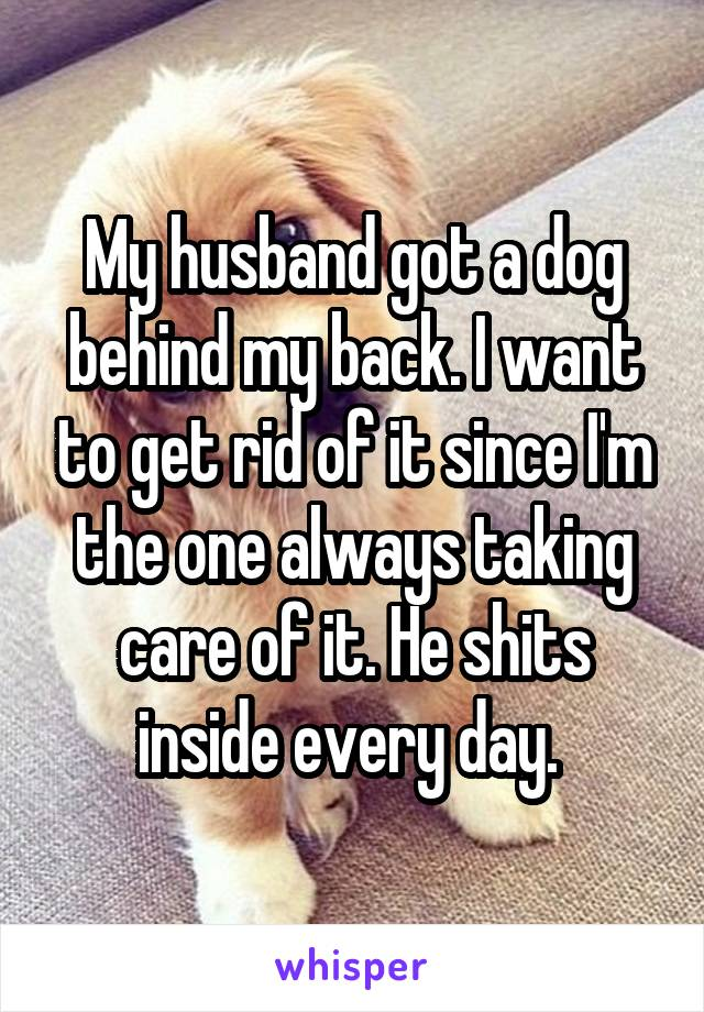 My husband got a dog behind my back. I want to get rid of it since I'm the one always taking care of it. He shits inside every day.