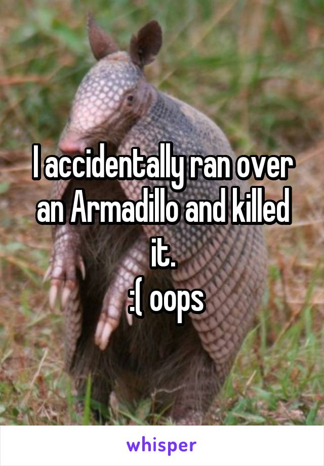I accidentally ran over an Armadillo and killed it.  :( oops