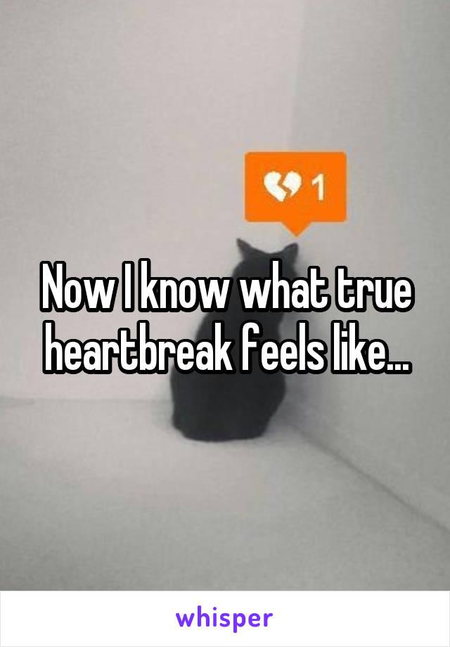Now I know what true heartbreak feels like...