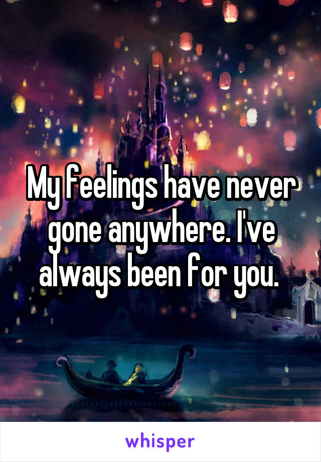 My feelings have never gone anywhere. I've always been for you.
