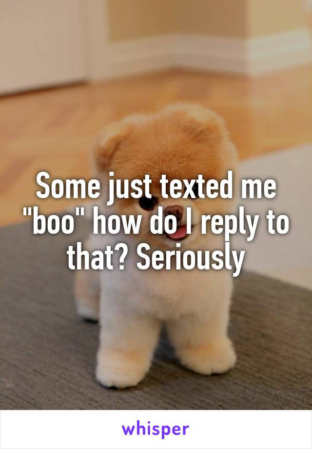 "Some just texted me ""boo"" how do I reply to that? Seriously"