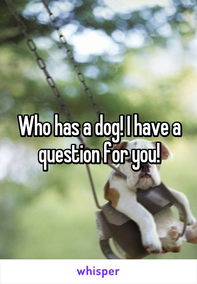 Who has a dog! I have a question for you!
