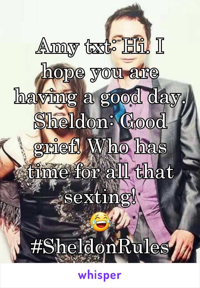 Amy txt: Hi. I hope you are having a good day. Sheldon: Good grief! Who has time for all that sexting! 😂 #SheldonRules