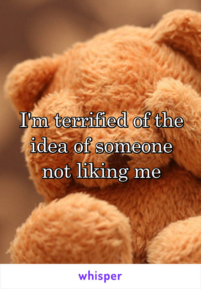 I'm terrified of the idea of someone not liking me
