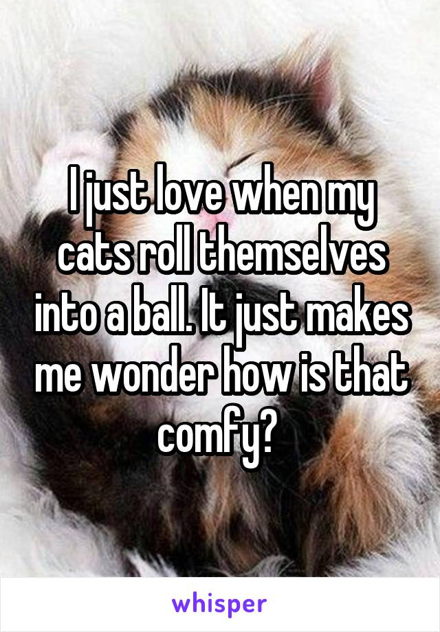 I just love when my cats roll themselves into a ball. It just makes me wonder how is that comfy?
