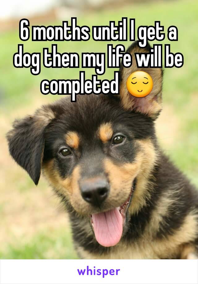 6 months until I get a dog then my life will be completed 😌