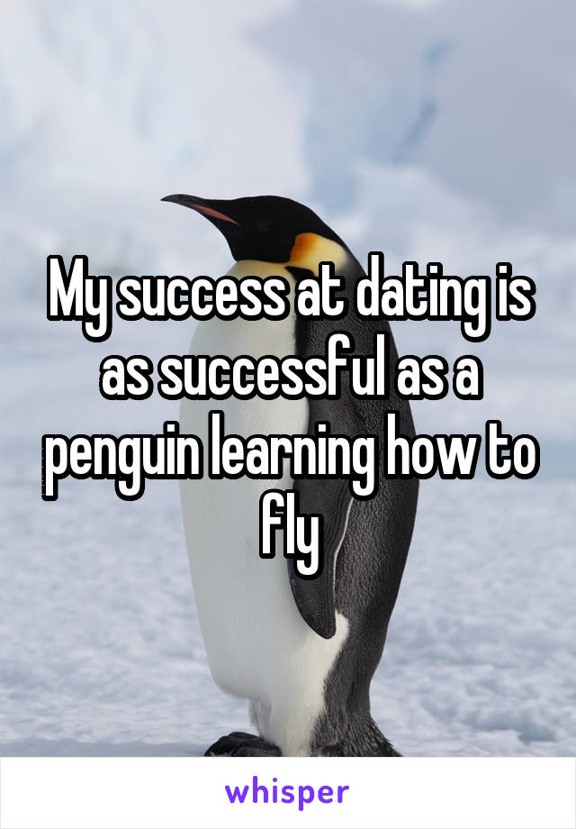 My success at dating is as successful as a penguin learning how to fly