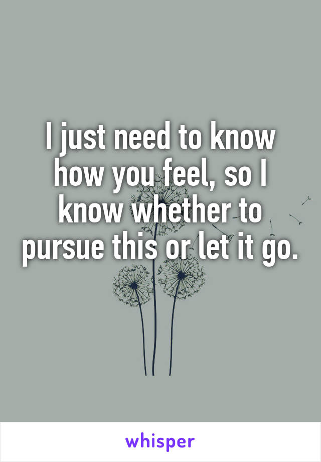 I just need to know how you feel, so I know whether to pursue this or let it go.
