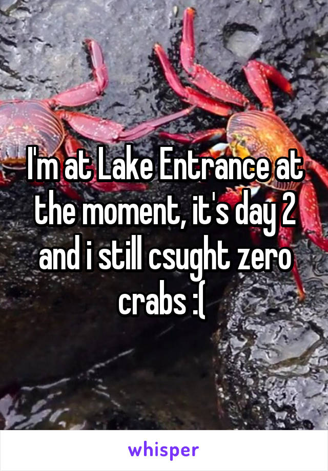 I'm at Lake Entrance at the moment, it's day 2 and i still csught zero crabs :(