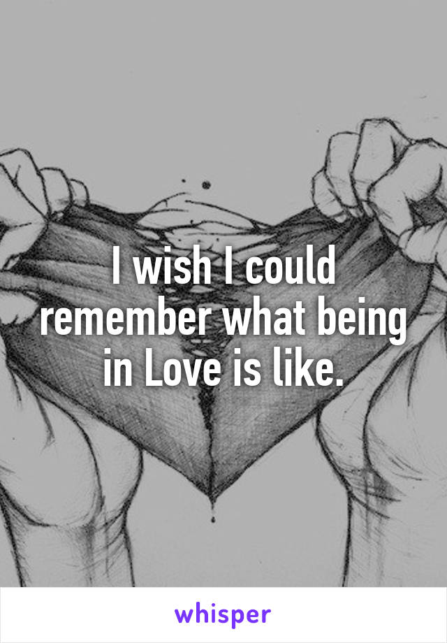 I wish I could remember what being in Love is like.