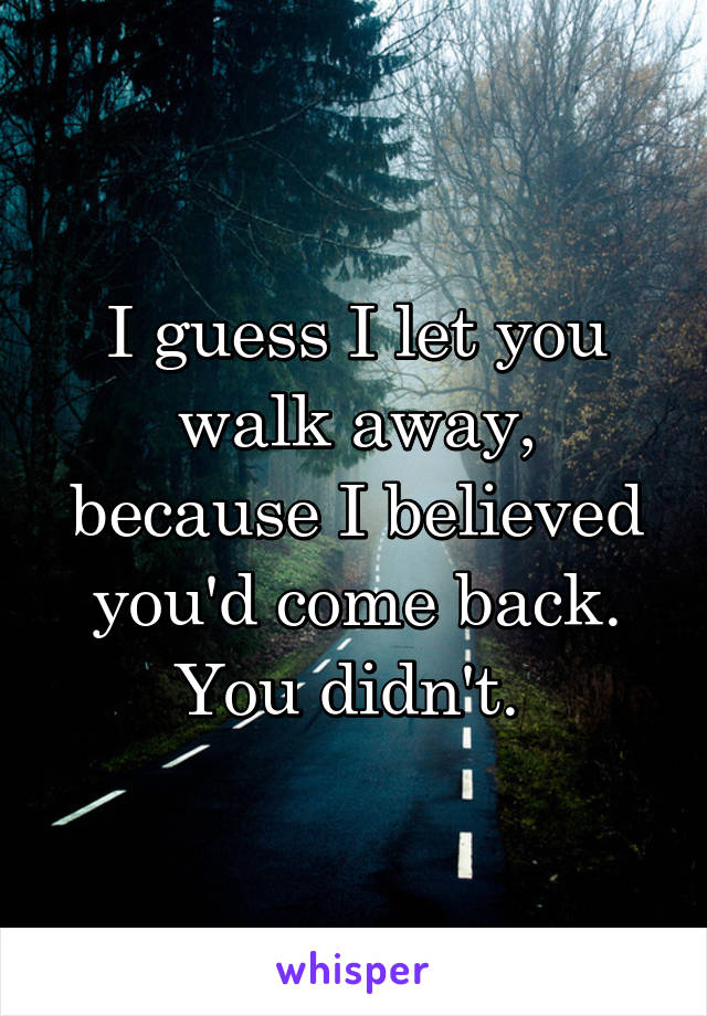 I guess I let you walk away, because I believed you'd come back. You didn't.