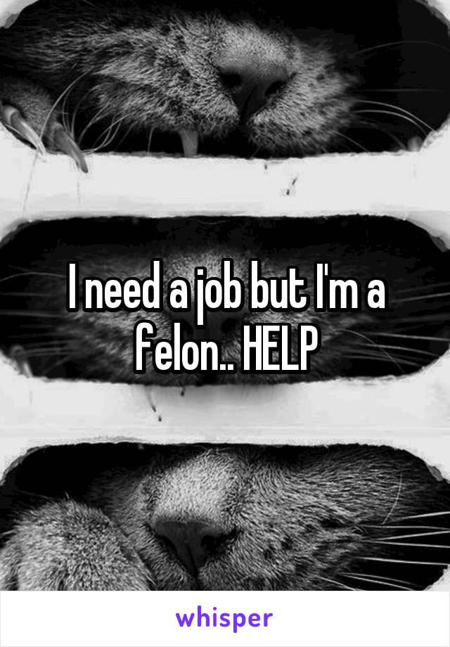 I need a job but I'm a felon.. HELP