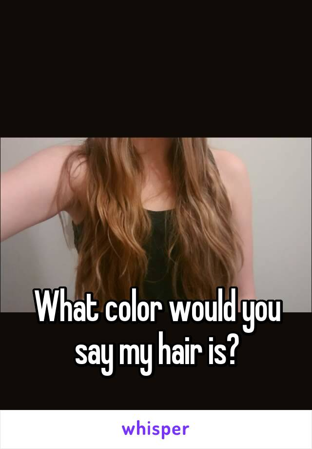 What color would you say my hair is?