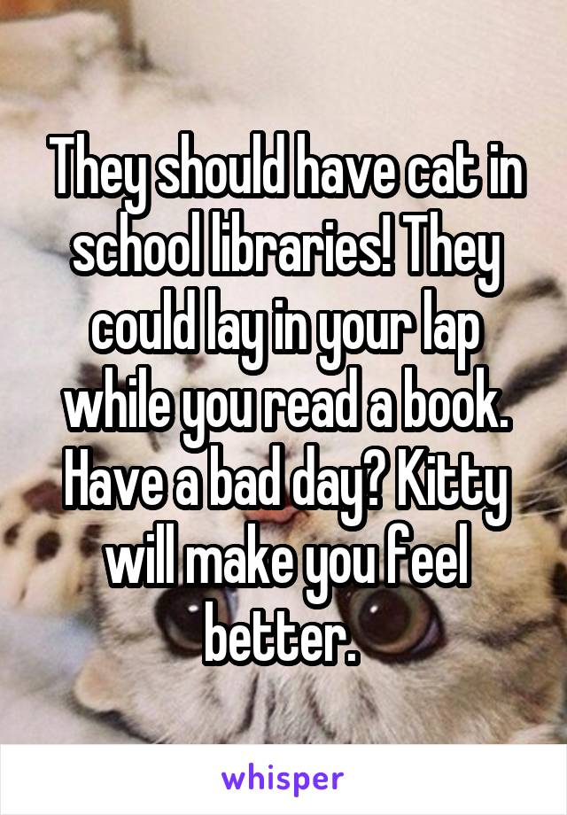 They should have cat in school libraries! They could lay in your lap while you read a book. Have a bad day? Kitty will make you feel better.