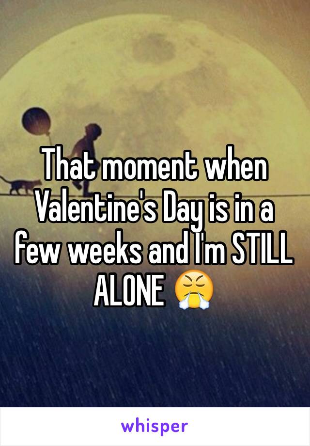 That moment when Valentine's Day is in a few weeks and I'm STILL ALONE 😤