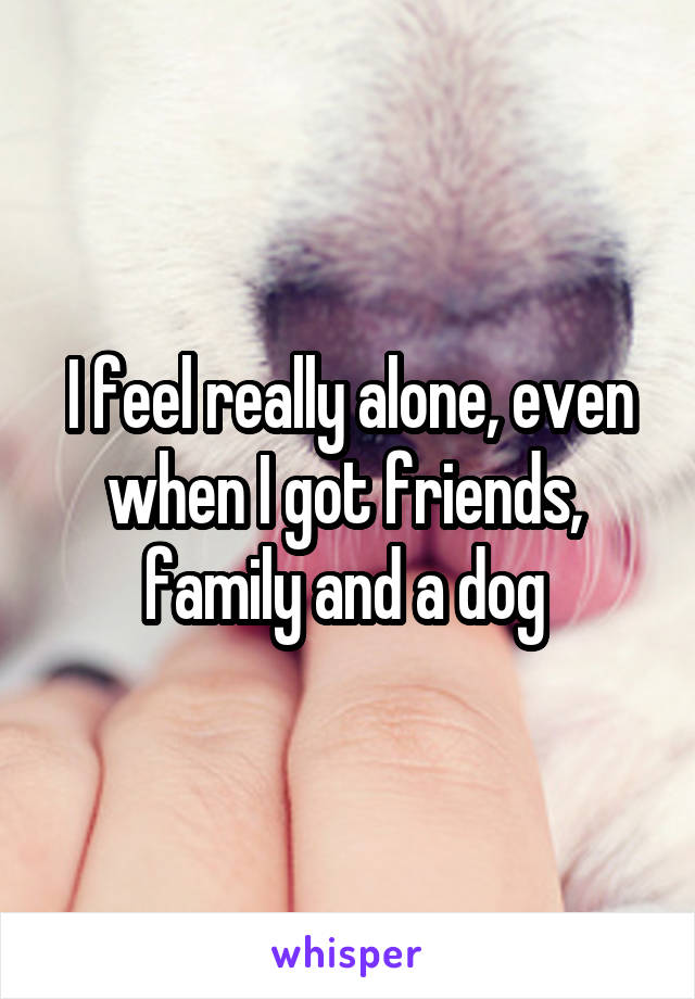 I feel really alone, even when I got friends,  family and a dog