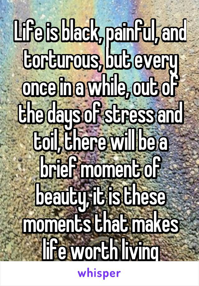 Life is black, painful, and torturous, but every once in a while, out of the days of stress and toil, there will be a brief moment of beauty, it is these moments that makes life worth living