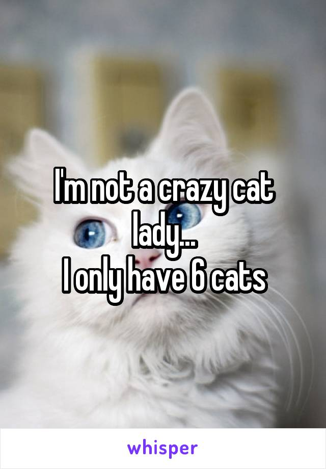 I'm not a crazy cat lady... I only have 6 cats