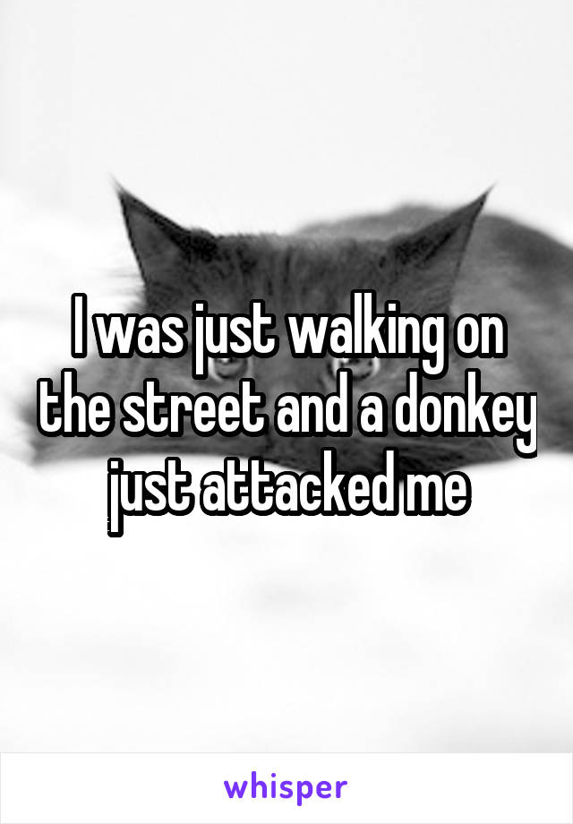 I was just walking on the street and a donkey just attacked me