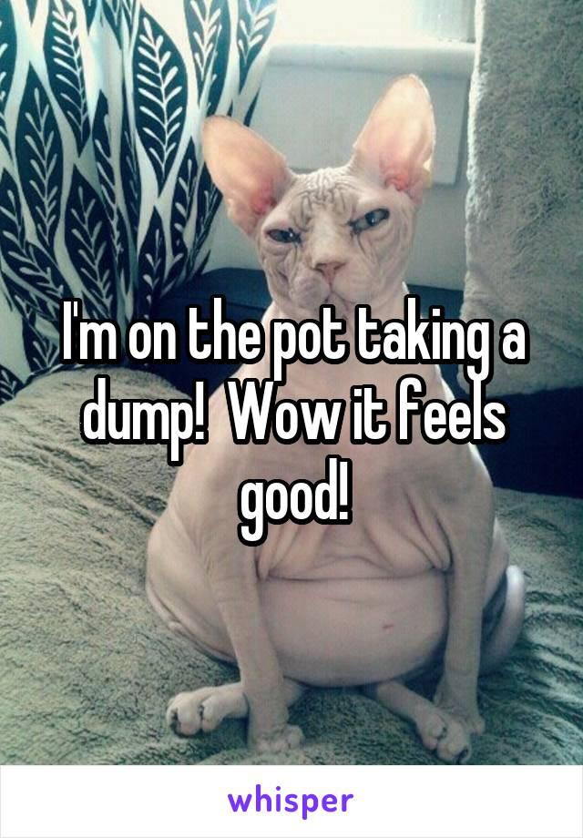 I'm on the pot taking a dump!  Wow it feels good!