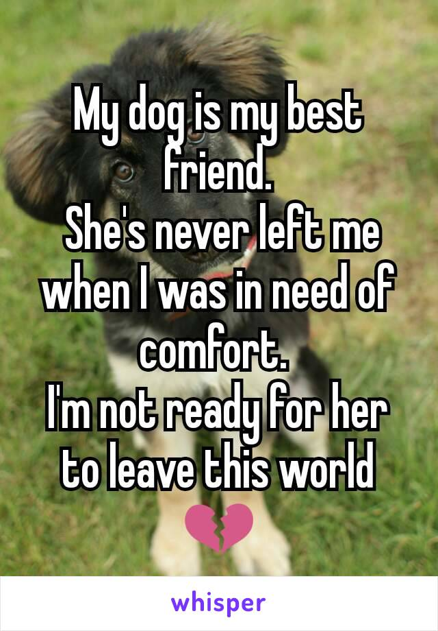 My dog is my best friend.  She's never left me when I was in need of comfort.  I'm not ready for her to leave this world 💔