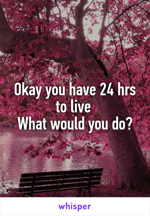 Okay you have 24 hrs to live  What would you do?
