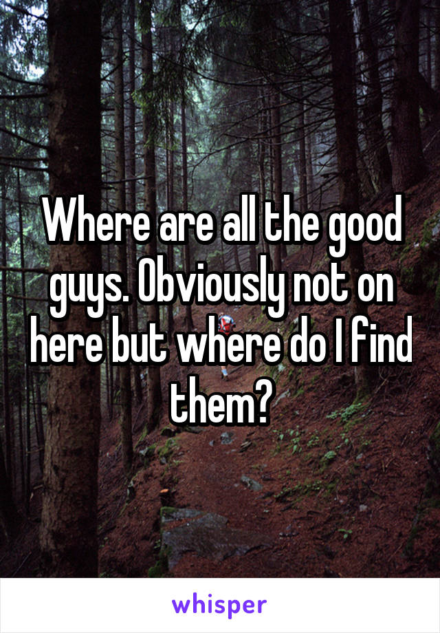 Where are all the good guys. Obviously not on here but where do I find them?