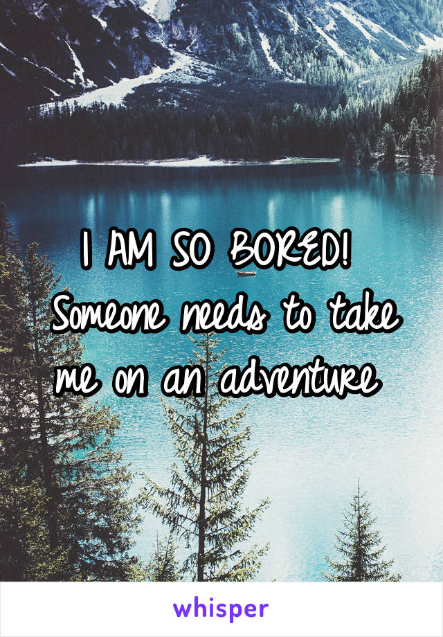 I AM SO BORED!  Someone needs to take me on an adventure